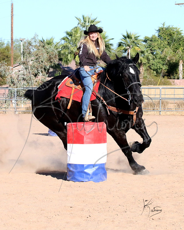 Percheron Running Barrels with Rider
